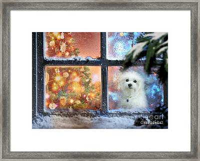 Where Is Santa ? Framed Print
