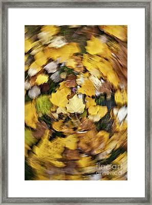 Whirlpool Of Autumn Framed Print