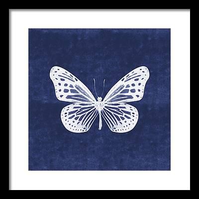 Blue Butterfly Framed Prints