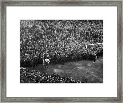 White Horse Final Framed Print by Central Press