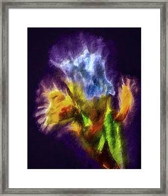 White Lily Bud #i0 Framed Print