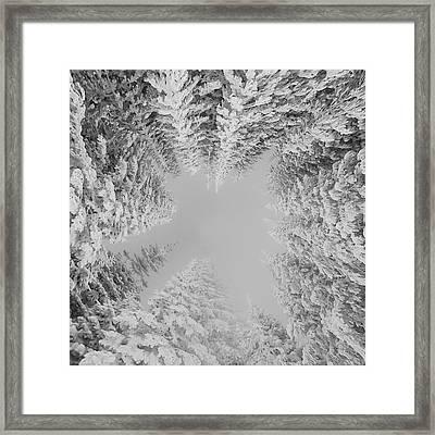Framed Print featuring the photograph White Winter Wonderland  by Rand