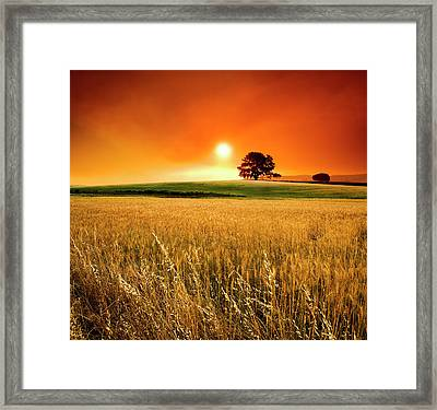 Wide Angle View Of A Blood-red Sunset Framed Print by Hougaard Malan