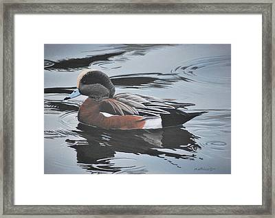 Framed Print featuring the painting Wigeon Drake by Peter Mathios