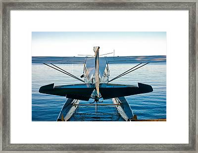 Framed Print featuring the photograph Wild Blue by Carl Young