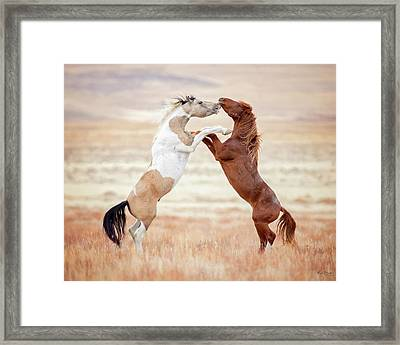 Wild Horses Couldn't Drag Me Away Framed Print