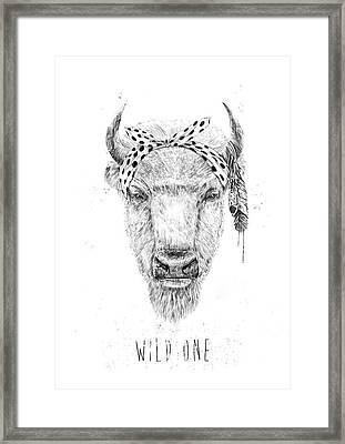 Wild One  Framed Print