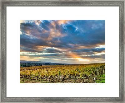 Willamette Valley In Fall Framed Print