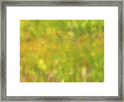 Wind Painting 4 Framed Print by Leland D Howard