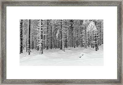 Framed Print featuring the photograph winter forest, Harz by Andreas Levi