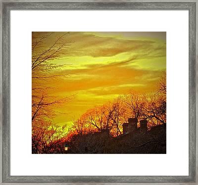 Winter Amber Framed Print