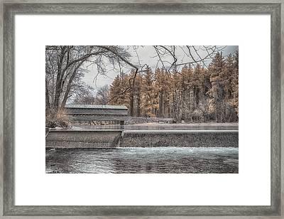 Winter Sachs Framed Print