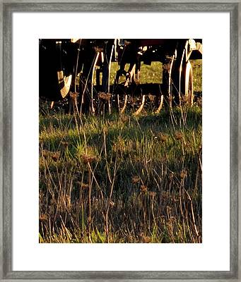 Framed Print featuring the photograph Winter Thistles And Cultivator by Jerry Sodorff