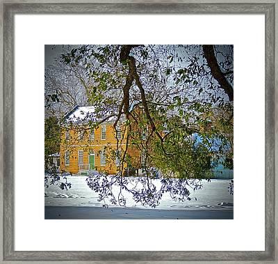 Winter Green Framed Print