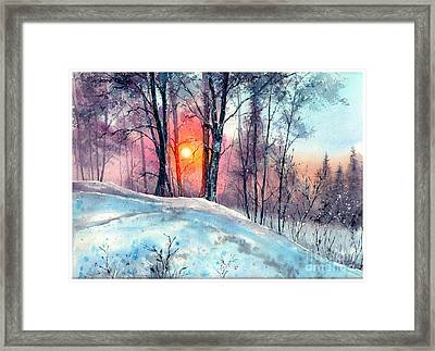 Winter Woodland In The Sun Framed Print