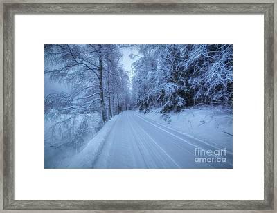 Winterland 13 Framed Print
