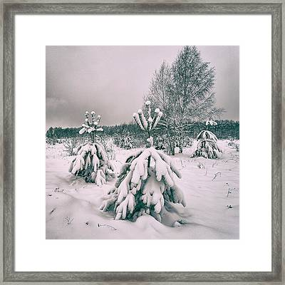 Framed Print featuring the photograph Winter's Coming. Horytsya, 2018. by Andriy Maykovskyi