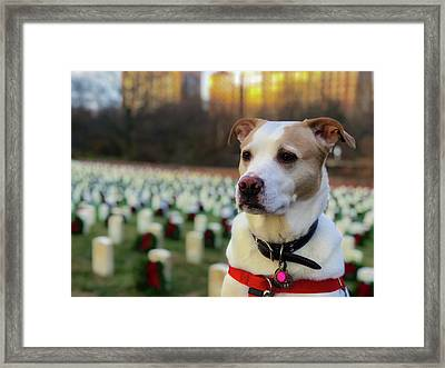With Respect  Framed Print