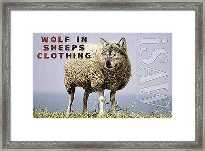 Wolf In Sheeps Clothing Framed Print