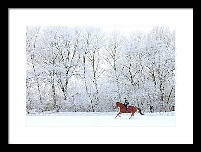 Horse In Motion Framed Prints