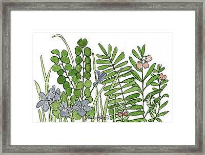 Woodland Ferns Violets Nature Illustration Framed Print