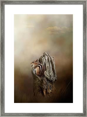Woodland Visitor Framed Print