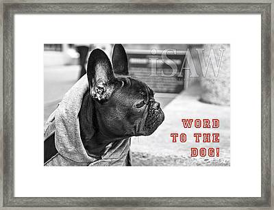 Word To The Dog Framed Print