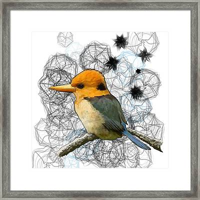 Y Is For Yellow Billed Kingfisher Framed Print