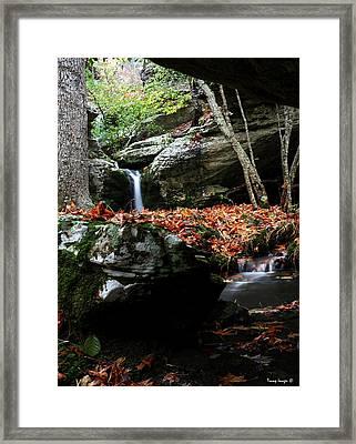 Yellow Cheek Valley Framed Print