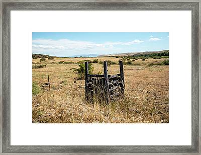 Yellow Grass And Fence Anchor Framed Print