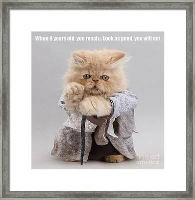 Framed Print featuring the photograph Yoda Cat by Warren Photographic