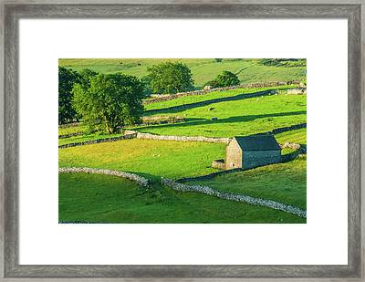 Yorkshire Dales Near Malham Framed Print by David Ross