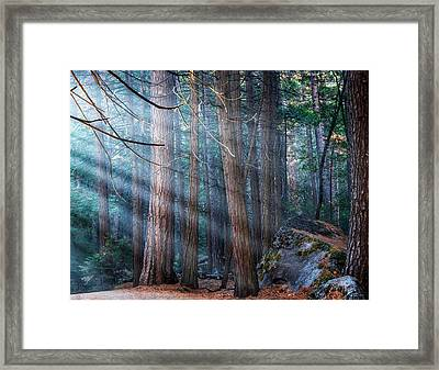 Framed Print featuring the photograph Yosemite Sunbeams II by Rand