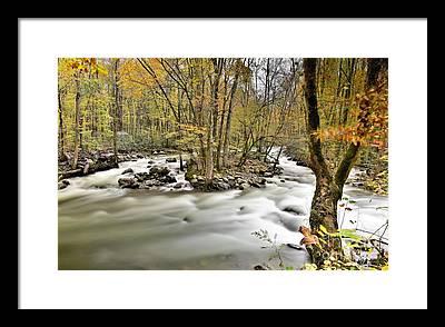 Greenbrier River Framed Prints