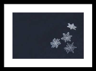 Snowflake Framed Prints
