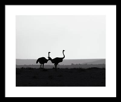 Minimalism Framed Prints
