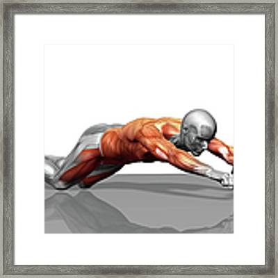 Ab Wheel Exercise Framed Print by MedicalRF.com