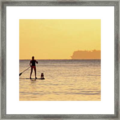 Evening Paddle Framed Print by David Buhler