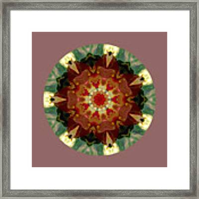 Kaleidoscope - Warm And Cool Colors Framed Print by Deleas Kilgore