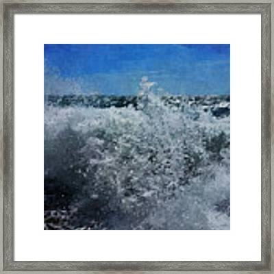 Levant Spray Framed Print by Julian Perry