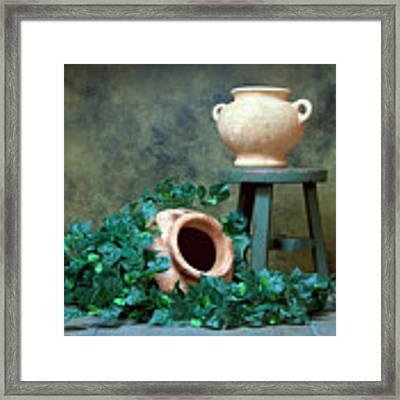 Pottery With Ivy I Framed Print by Tom Mc Nemar