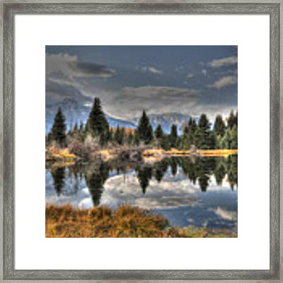 Teton Beaver Pond Framed Print by David Armstrong