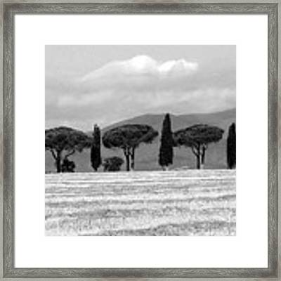 Tuscany Trees Framed Print by Julian Perry