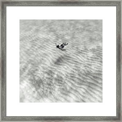 150821-3895 Framed Print by Enric Gener