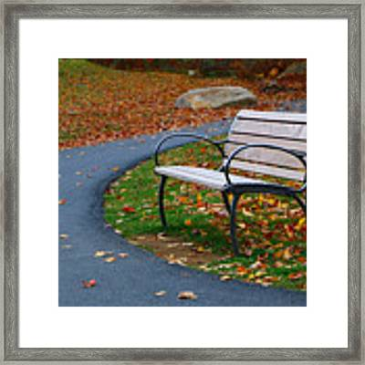 Bench On The Walk Framed Print by Rick Morgan