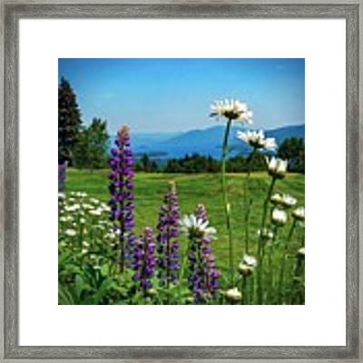 A June Day In Heaven Framed Print by Kendall McKernon
