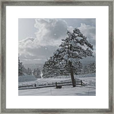 A Winter Storm In Pagosa Framed Print by Jason Coward