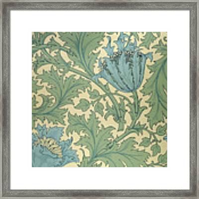 Anemone Design Framed Print