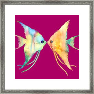 Angelfish Kissing Framed Print by Hailey E Herrera