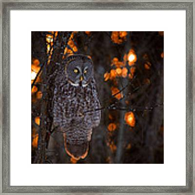 As The Sun Goes Down Framed Print by Nick Kalathas